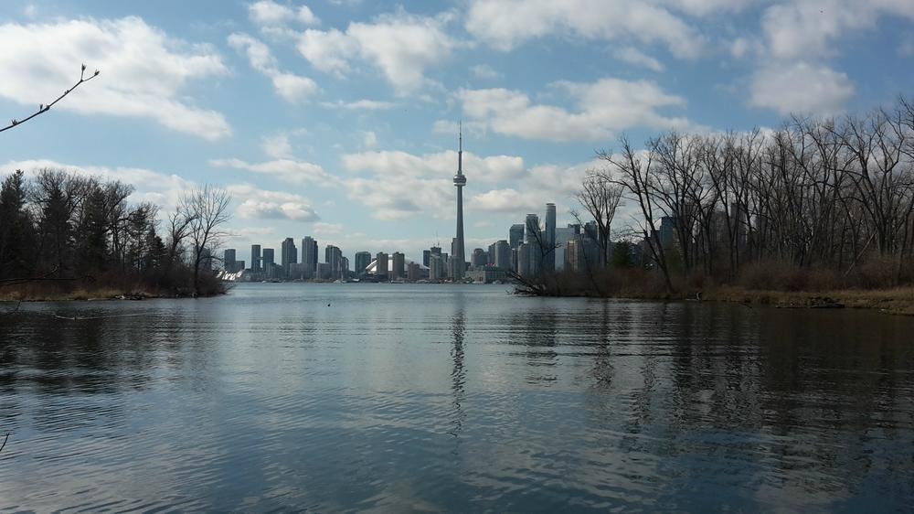 View of Toronto city skyline