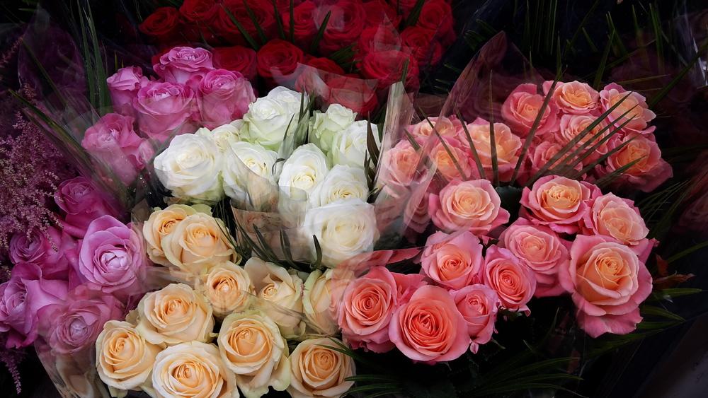 Flower market colours