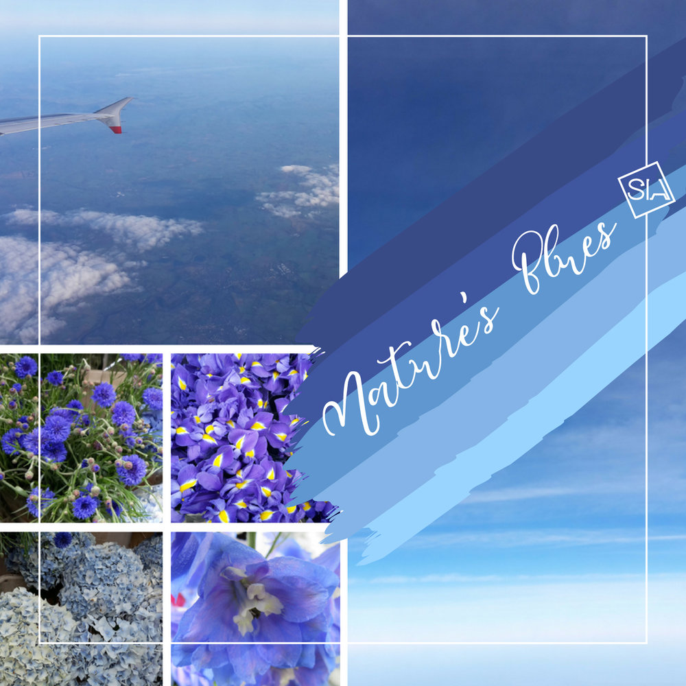 Blues from nature moodboard | South Island Art