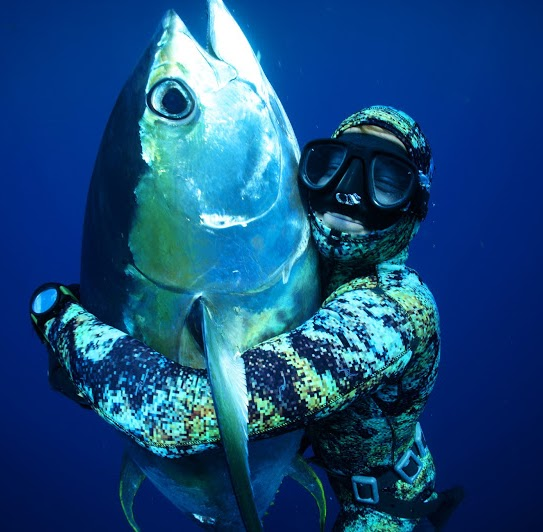 Story by master free diver & amazing family man, John Dornellas.