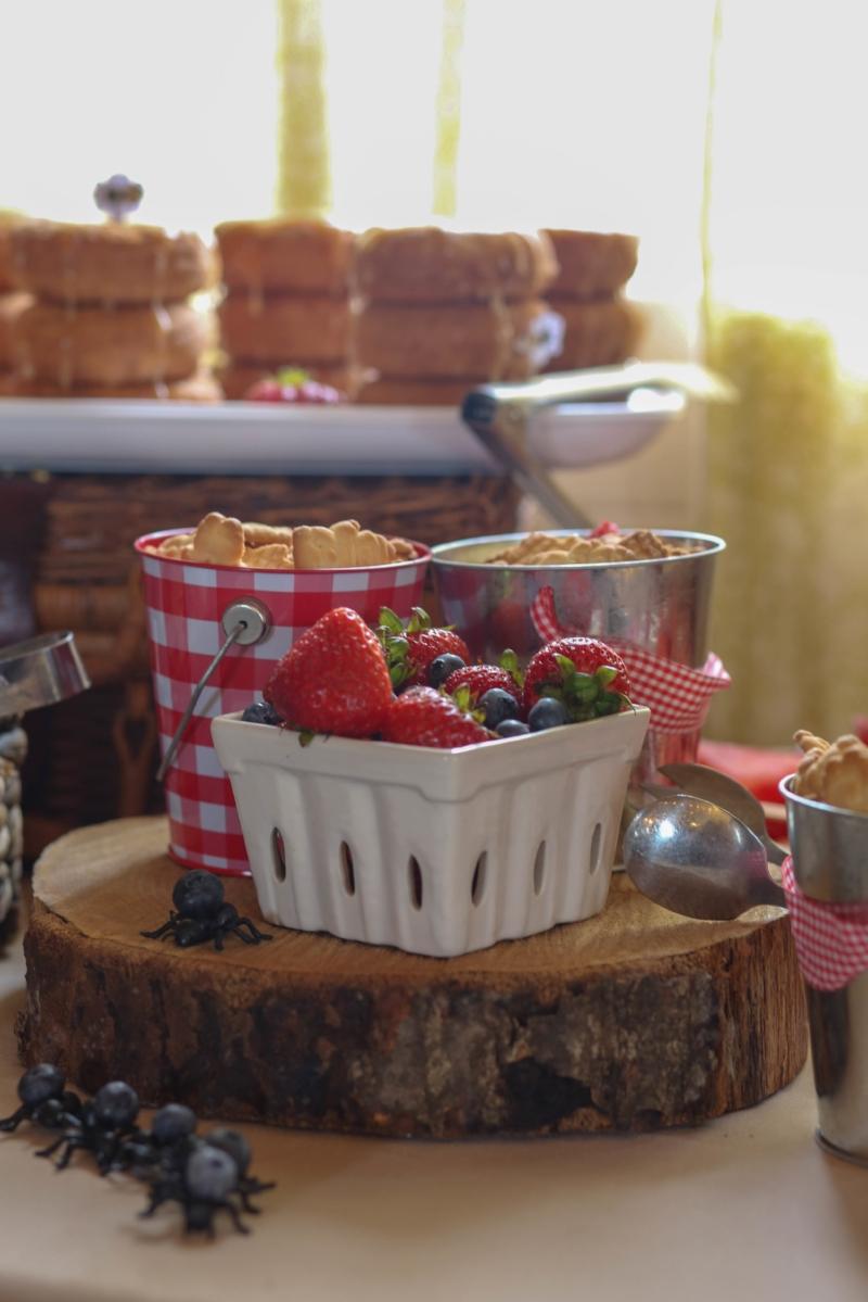picnic - summer party - teddy bear