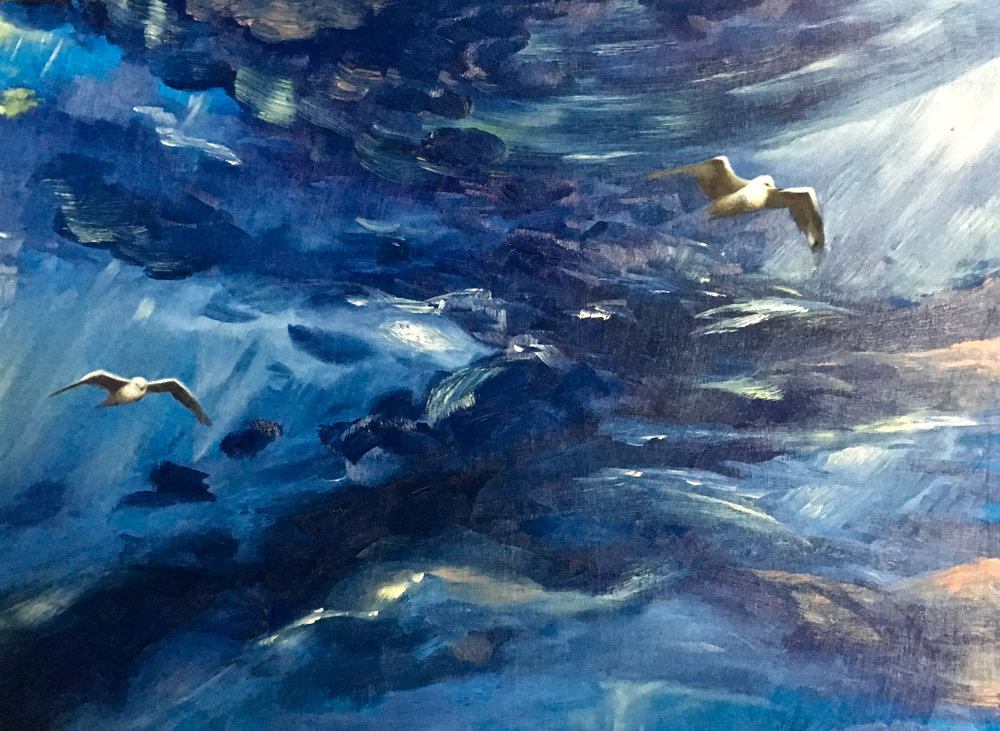 Stormy Seagulls