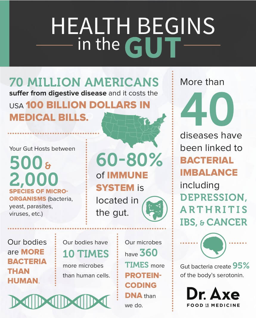 Did you know that 60-80% of our immune system is found in our gut?!?!