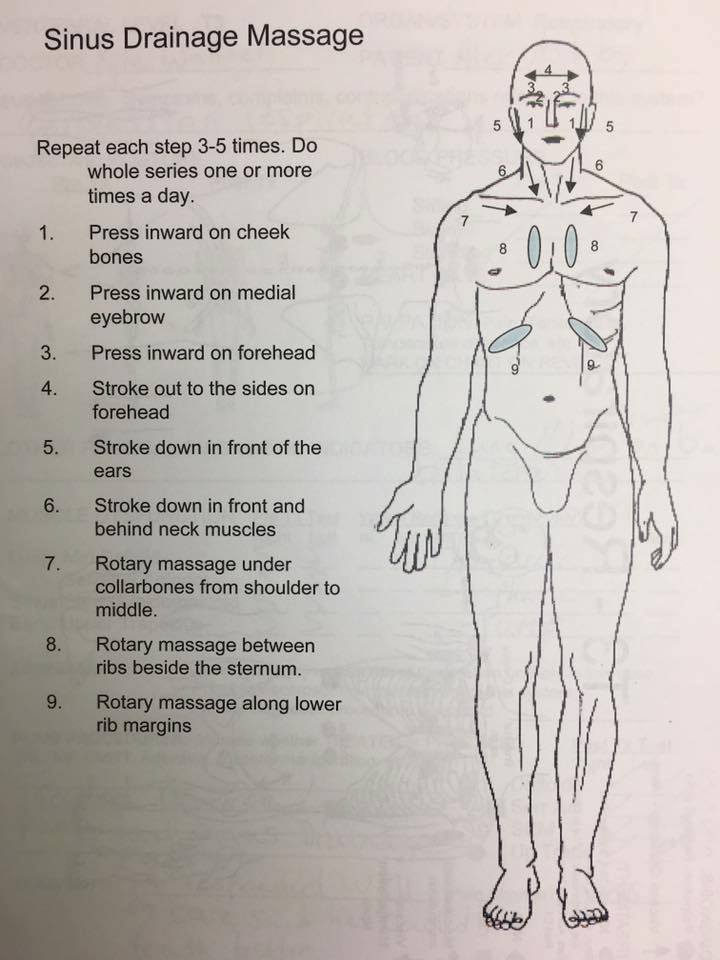 lymphatic drainage.jpg