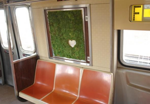 edina-tokodi-metromoss