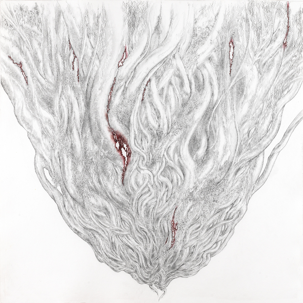 BLEEDING BANYAN 2, 2013, graphite pencil and red marker with acrylic on Twinrocker handmade paper, 34 x 34 inches