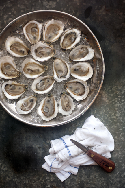 NEW ENGLAND KITCHEN Raw Oysters _MHT3364.jpg