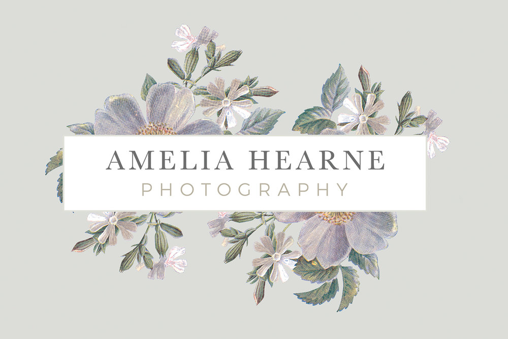 When I didn't quite know what I wanted, or had trouble verbalizing my aesthetic preferences, Amanda asked the right questions and made helpful suggestions to really get to the heart of my vision. - Amelia Hearne, Amelia Hearne Photography brand identity design