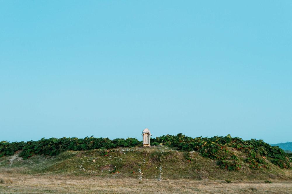 El lugar más pequeño 10 - Felipe Abraham.jpg