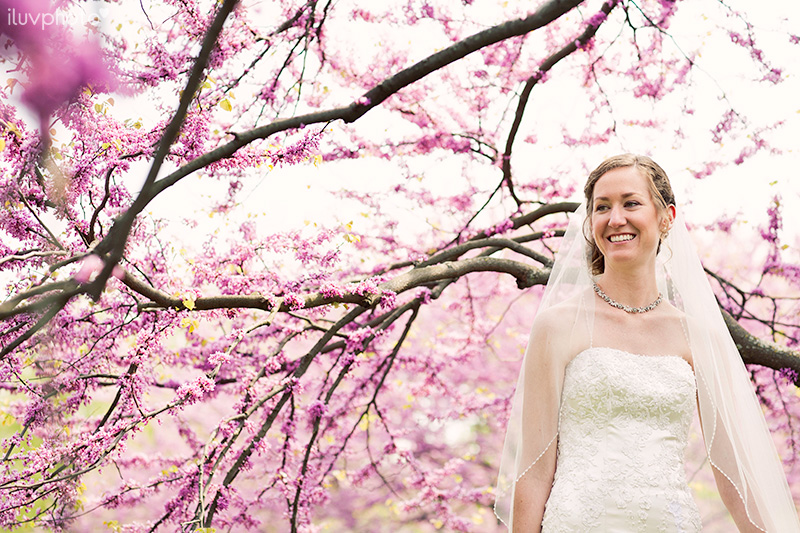 07_iluvphoto_chicago_botanic_garden_wedding_photographer