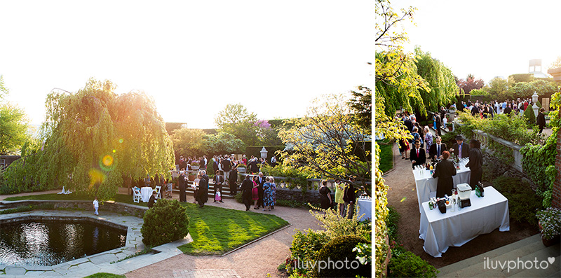 18_iluvphoto_chicago_botanic_garden_wedding_photographer
