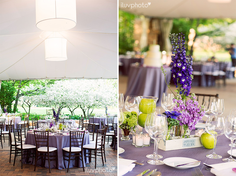 20_iluvphoto_chicago_botanic_garden_wedding_photographer