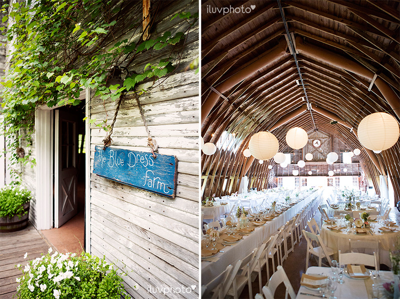 25_iluvphoto_Blue_dress_barn_wedding_reception_outdoor_ceremony_photographer