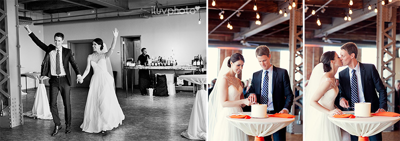City_view_Chicago_wedding_Photographer_24