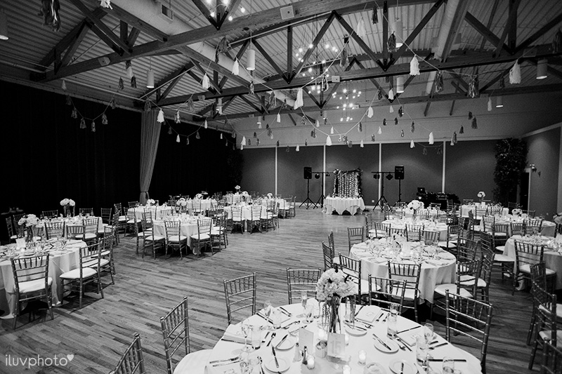 iluvphoto_arlington_Heights_wedding_photography_Metropolis_ballroom_22