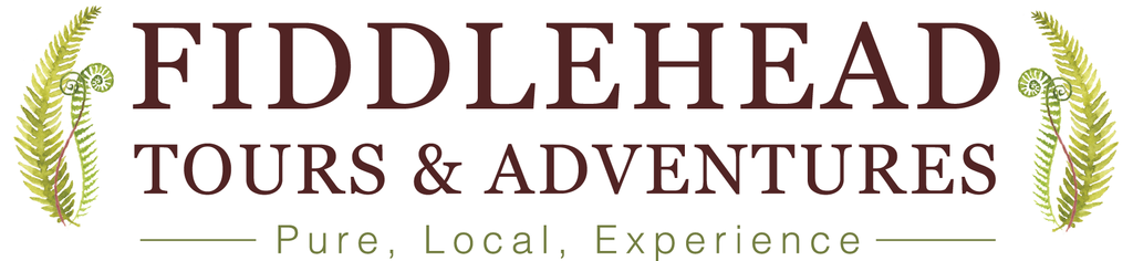 Fiddlehead Tours & Adventures