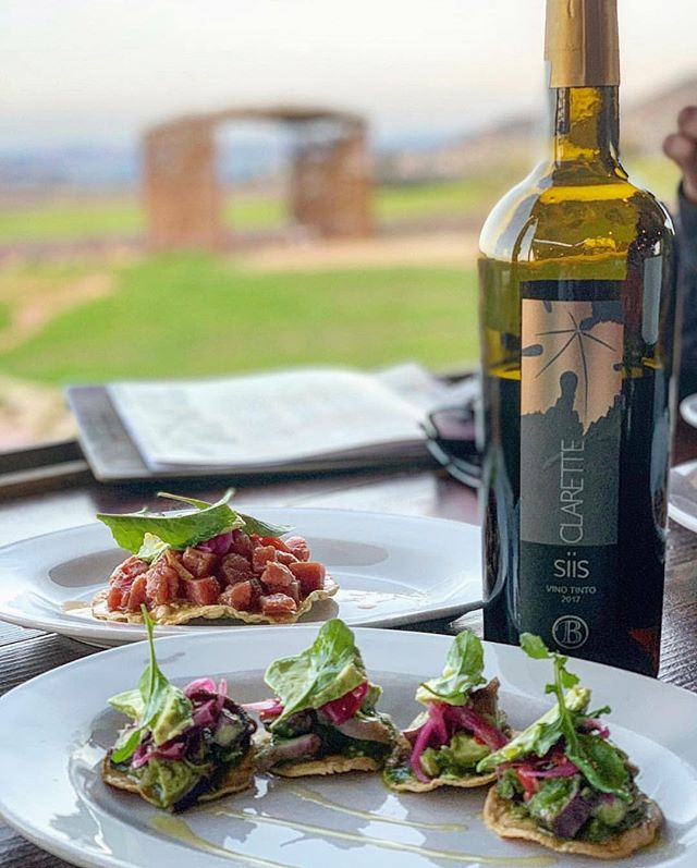 Octopus, tuna and #Baja wines with a view😍 what's not to like?  #fincaaltozano #valledeguadalupe #winecountry #vineyards #mexico 📸 @the_hombre_eats