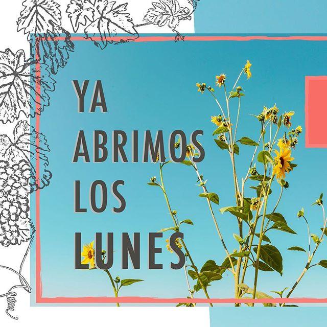 Ya casi llega la #primavera y #fincaaltozano ya abre los lunes 🌼 los esperamos los 7 días de la semana! 🍴🥂 #valledeguadalupe ➡️ www.fincaaltozano.com