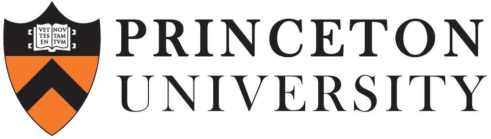 princeton-university-course.jpg