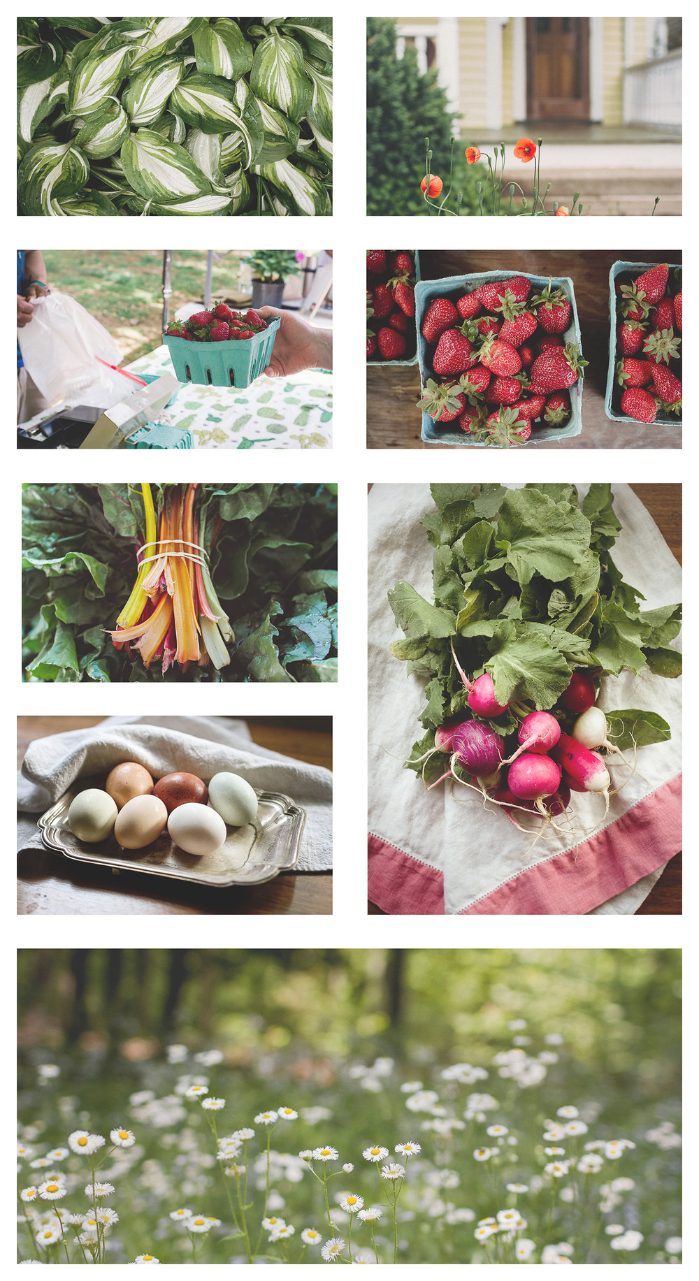 FarmersMarket_Collage_forBlog.jpg