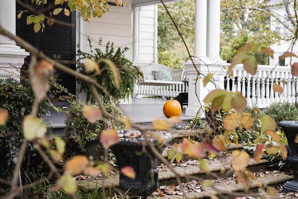 Pumpkin_through_Leaves_0001.jpg
