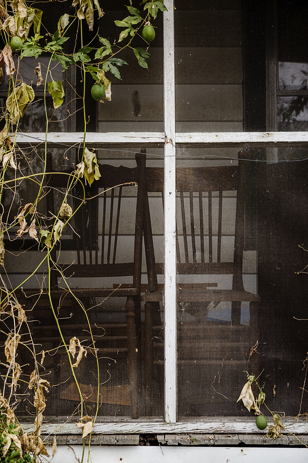 Screened_Porch_0009.jpg