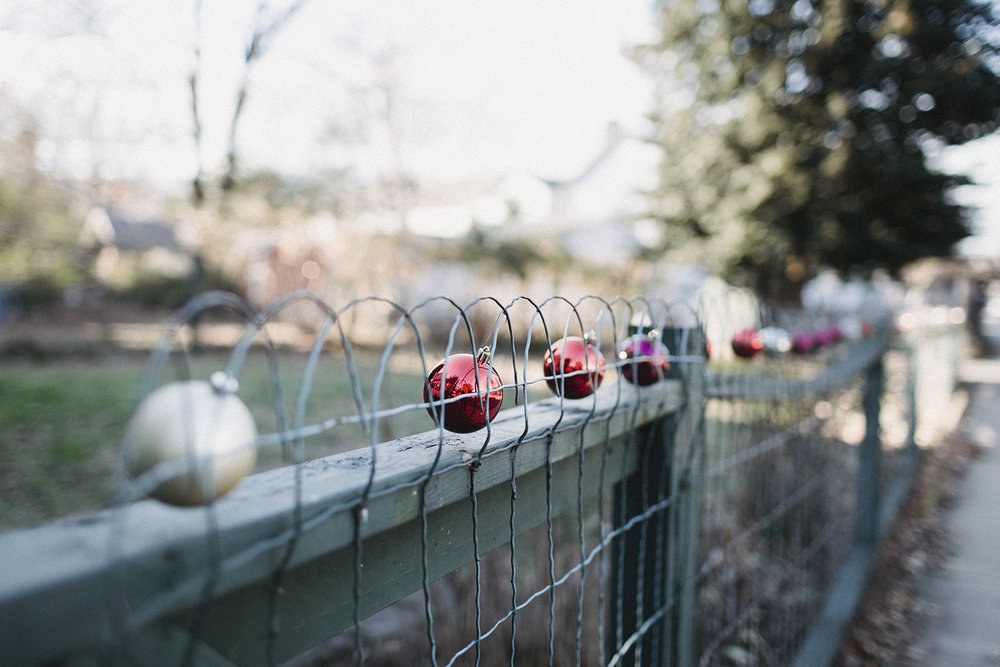 Ornaments_on_Fence_0001.jpg