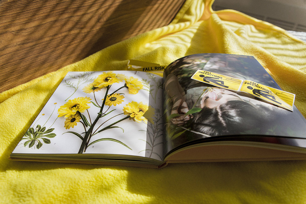 Yellow_FallRisk_0050.jpg