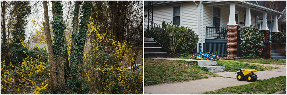 Yellow_Truck_Forsythia_Diptych.jpg