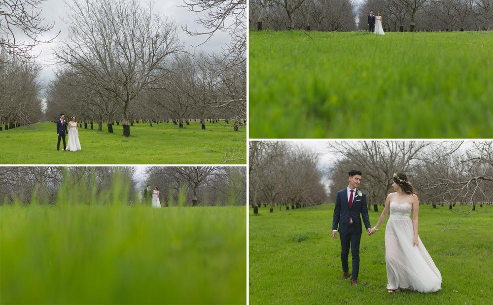 grass_couple.jpg