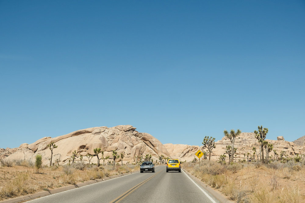 joshua-tree-adventure-9442.jpg