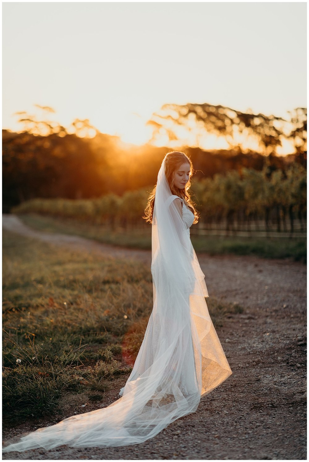 Bowral Southern Highlands Autumn Wedding - Mon Cheri Bridal dress at sunset