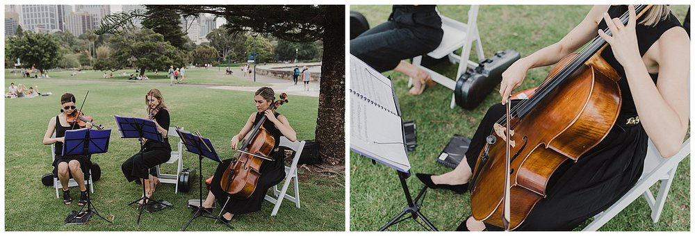 String Trio entertains wedding guest at the Royal Botanic Gardens Sydney