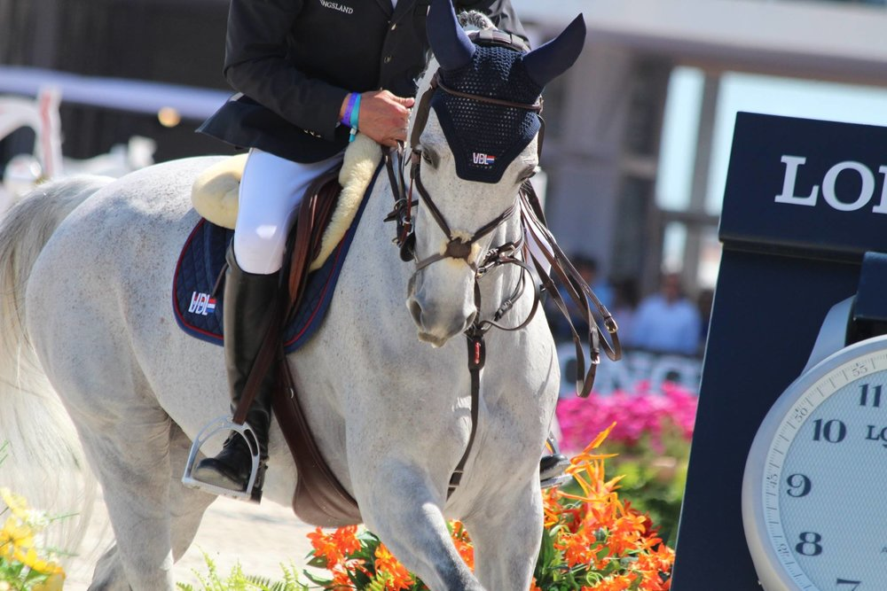 Leopold Van Asten and his ride sprouted wings in their course and cleared their round by a mile.