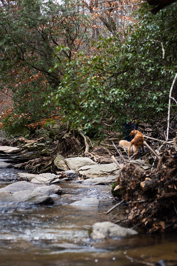 Sope_Creek_in_Marietta_Photoshoot_with_Atlanta_Engagement_Photographer_Chanel_G_Photography_8