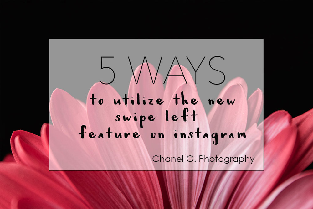 tips_for_how_to_use_new_instagram_album_feature_by_Atlanta_Photographer_Chanel_G_Photography