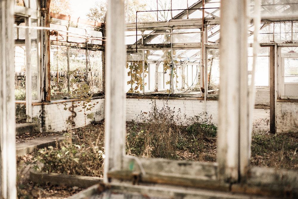 Atlanta-abandoned-greenhouse.jpg