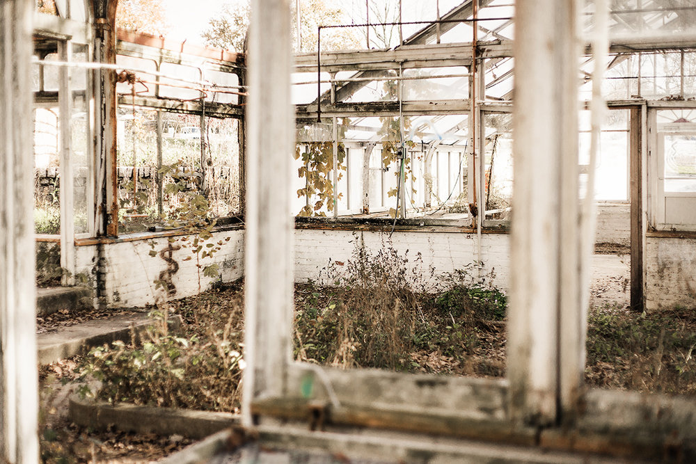 abandoned-greenhouse-in-atlanta-by-marietta-photographer-chanel-french