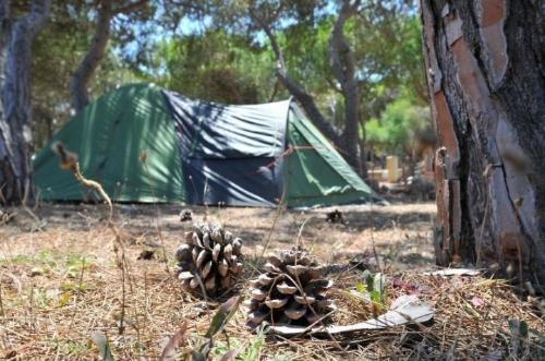 Camping-Area.jpg