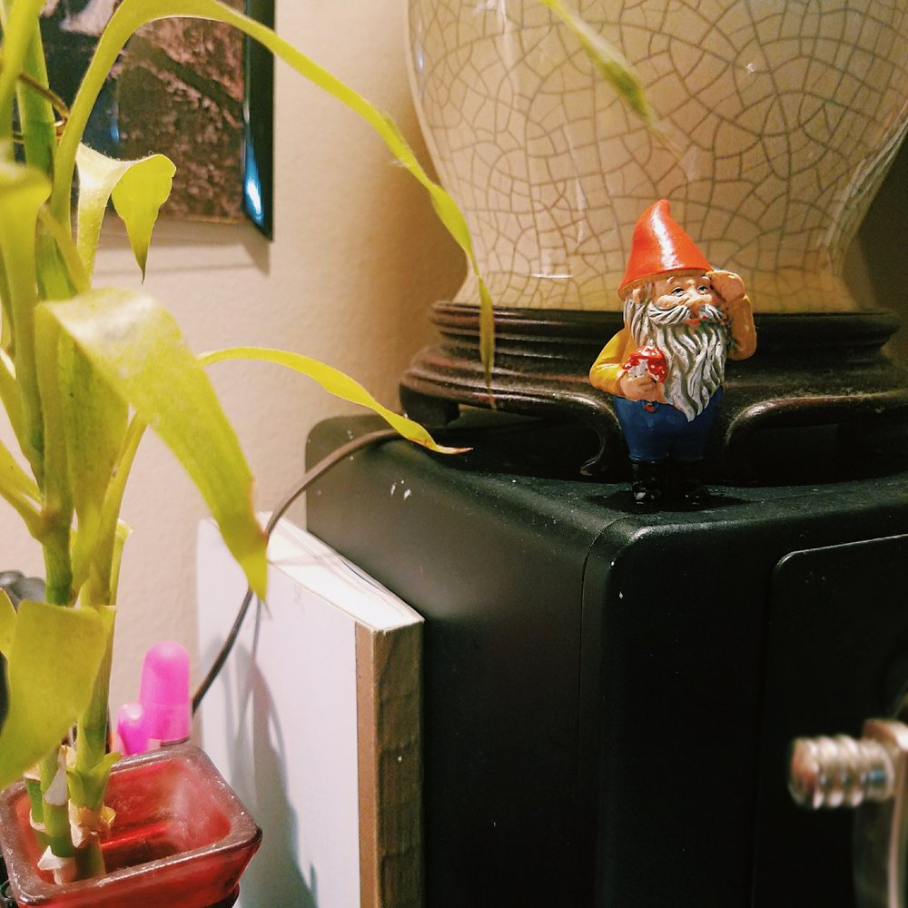 The household gnome. I originally got this for my husband because he puts hidden gnomes in all his drawings. Then me and my son have been taking turns with it in our possession. It's safe to say we all like the gnome. I have it now...ha.