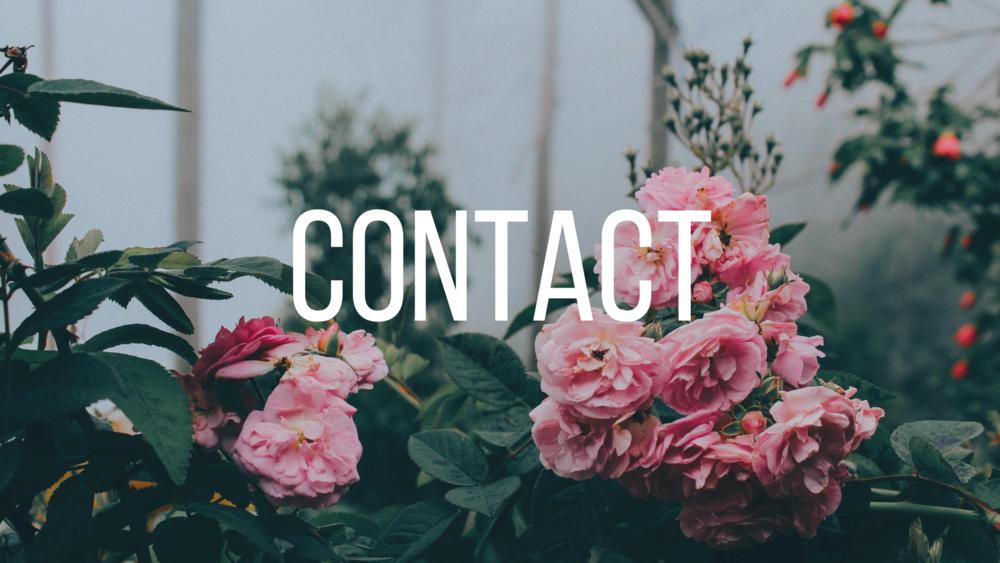 rose contact.png