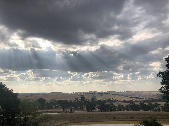 Clouds rollin 🙌⛅️ #cloud9farm #cloud9 #cellardoor #winery #wine #winetasting #winelover #winestagram #wineandcheese #cheese #cheeselover #visitvictoria #visitmelbourne #seeaustralia #wandervictoria #melbourne #weekend #weekendvibes #daylesfordmacedonranges #landscapephotography #landscape #country #countryside #farmlife #roomwithaview #view #viewsfordays #autumn