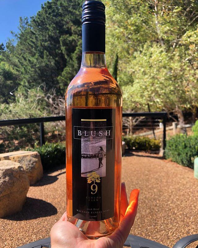 Crushing on BLUSH new release Pinot Noir Rosè available now at our cellar door 💕 #cloud9 #cloud9farm #wine #winery #winetime #winetour #winemaking #winemaker #winelover #winetasting #winestagram #wineoftheday #wineblogger #wineandcheese #redwine #wineandfood #macedonranges #daylesfordmacedonranges #daylesfordmacedonlife #wandervictoria #visitvictoria #visitmelbourne #cellardoor #smallbatch #macedonrangeswine #seeaustralia #pinotnoir #rosè #roseallday