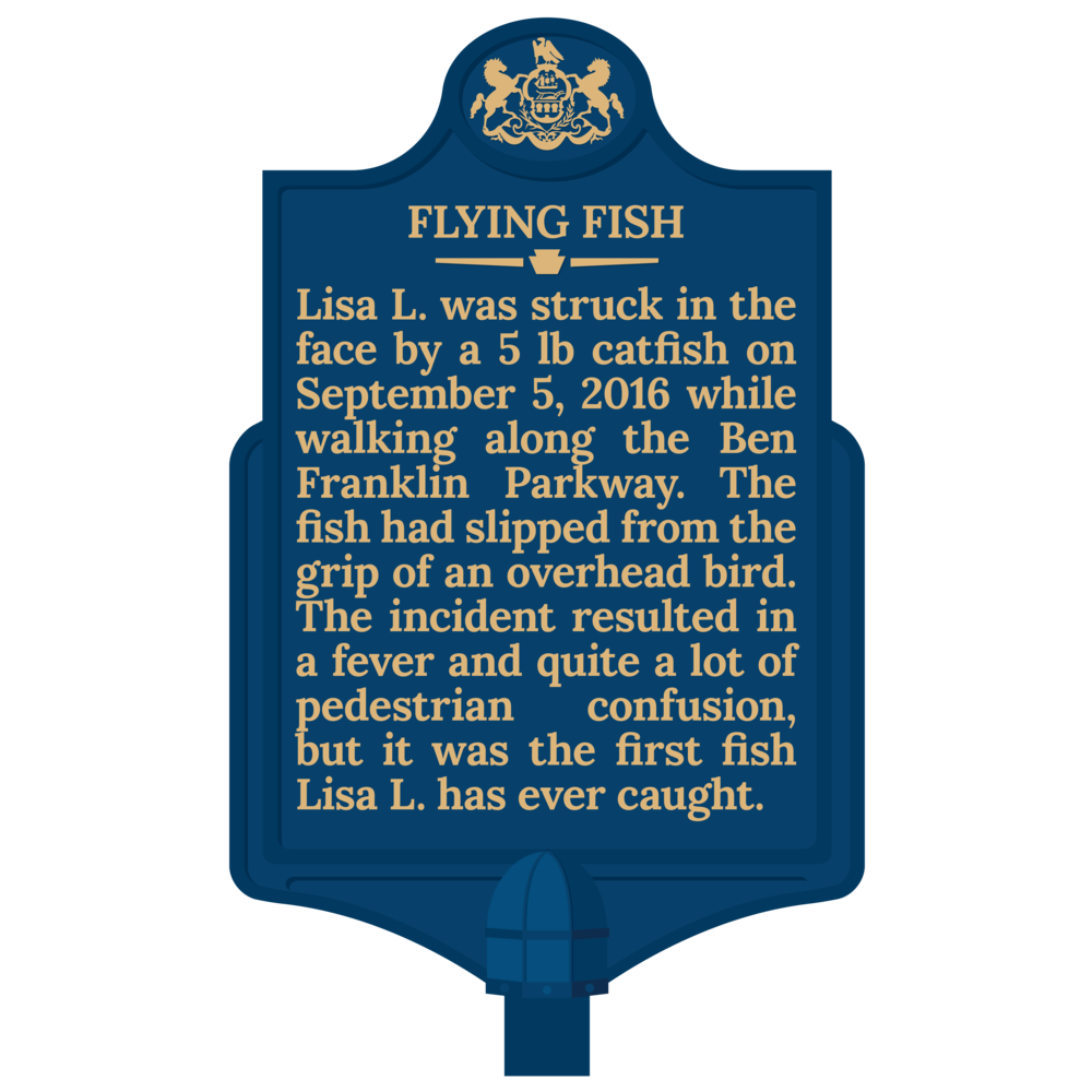 flying fish without website.png