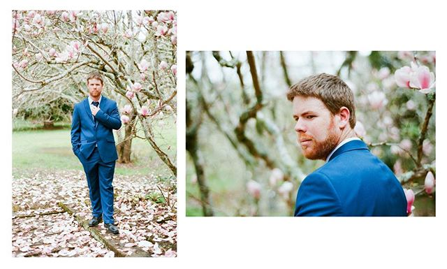•This was one of my favourite weddings this year. Kaitaia is a truly beautiful land with such an amazing scenery. • #mediumformat #nikonf100 #35mm #35mmfilm #carlzeiss50mm #kodak #madewithkodak #filmisnotdead #nzweddings #kodakfilm #ishootfilm  #believeinfilm #filmisalive #istillshootfilm #filmphotography #staybrokeshootfilm #newzealandweddingphotographer #groom #buyfilmnotmegapixels #shootfilm #analog #portra400 #filmphotographic #filmcommunity #portra  #kodakportra #filmfeed