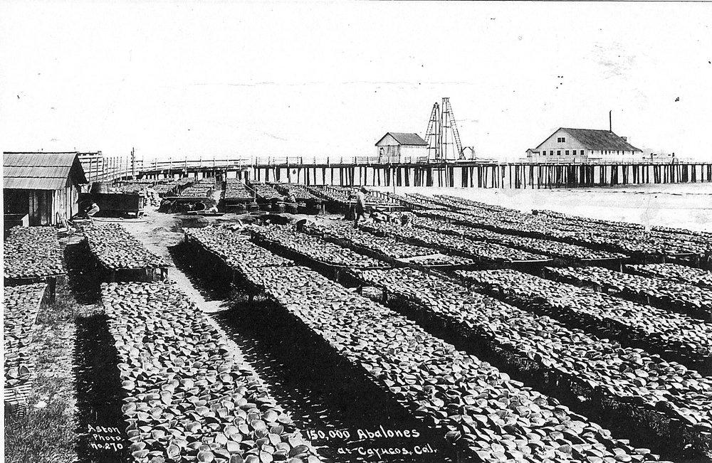 HistoricalCenter.image.shell.1910.jpeg