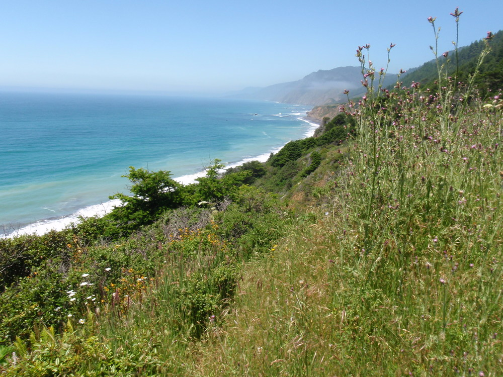 Lost Coast Trail & King Range | June 2011