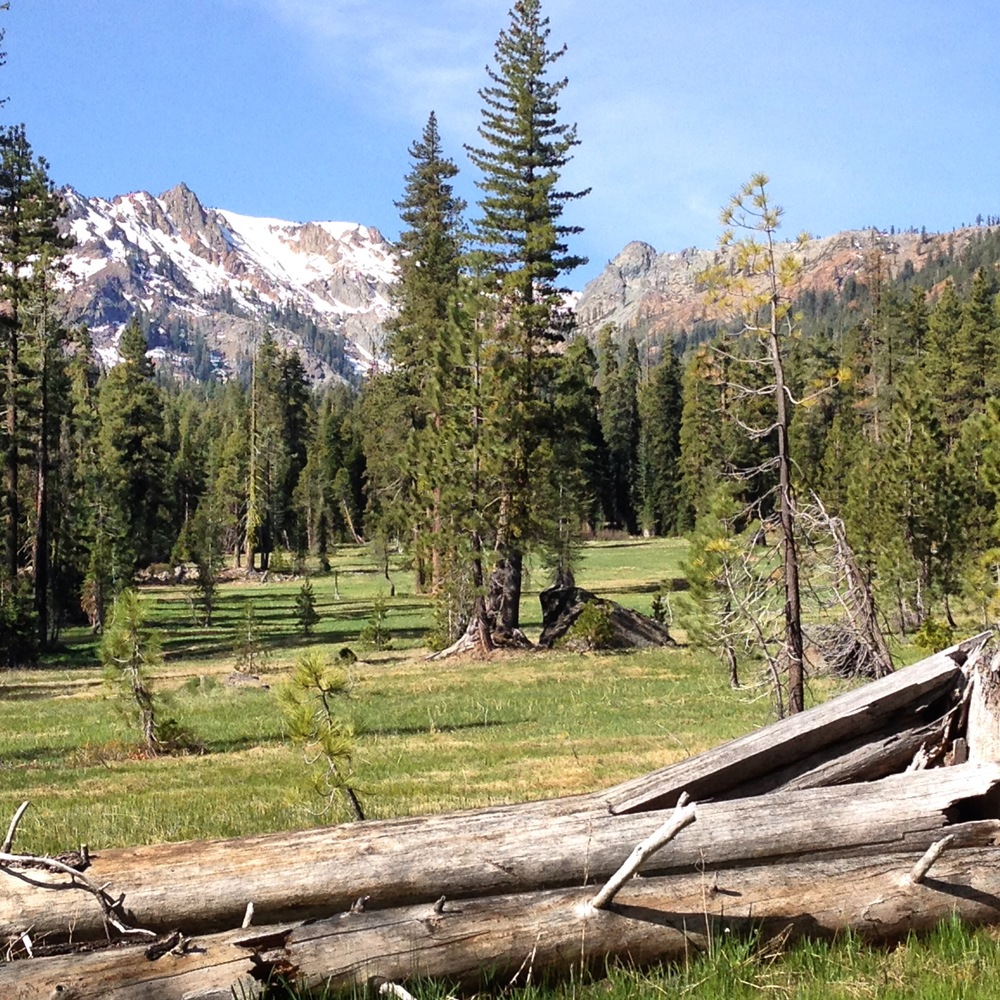 Trinity Alps | Swift Creek | May 2014