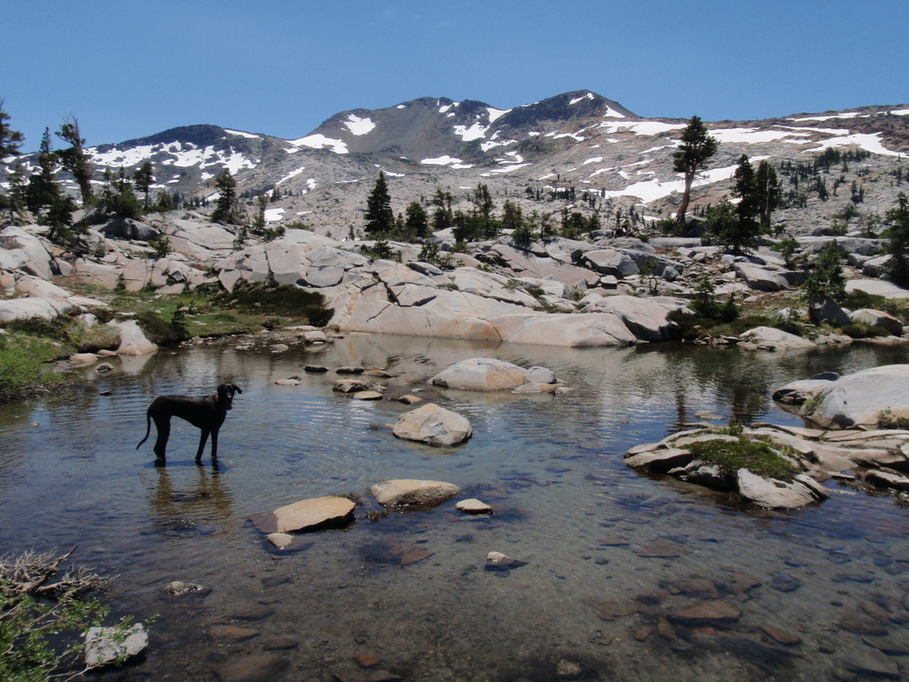 Desolation Wilderness | July 2009