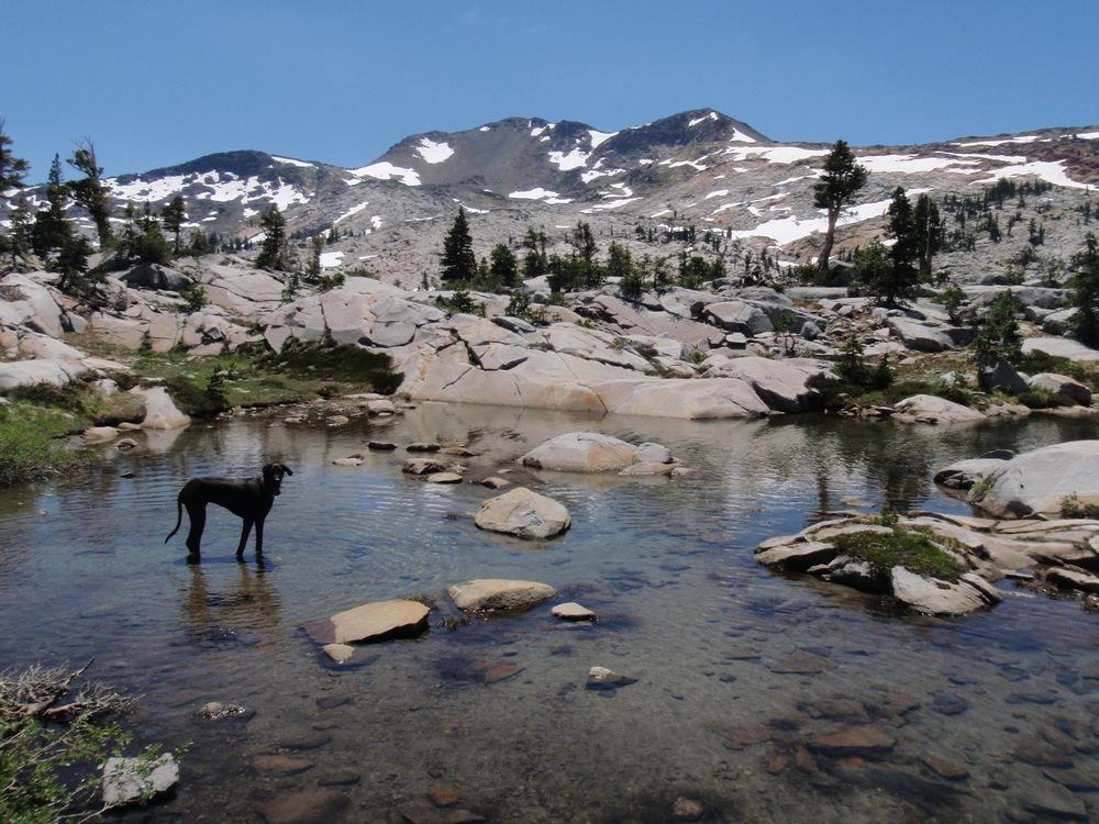 Desolation Wilderness | July 2009